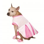 $4-5 Halloween Dog Costumes (Reg. $10) + FREE In Store Pick-Up