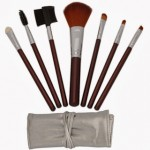 7 Piece Brown Makeup Brush Kit + Case ONLY $3.57 Shipped (Reg $9.99!)