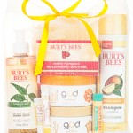 Burt's Bees Summer Grab Bag ONLY $25 + Free Shipping Offer When You Buy 2 (Includes 11 Full Sized Products!)