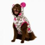 Petsmart: 50% off Dog Coats, Scarves, Christmas Items + More!