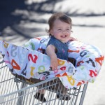 Cheap & Highly Rated Baby Shopping Cart Covers