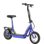 Currie Technologies eZip 500 Electric Scooter ONLY $240 + Free Shipping (Reg $449!)