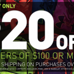 Dick's Sporting Goods- Get $20 off Orders of $100 + Free Shipping (Today Only! 8/13)