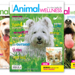 Get 1 Free Issue of Animal Wellness Magazine