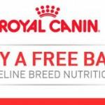 FREE 12oz. Bag of Royal Canin Cat Food!