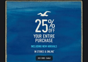 25% Off Hollister Promo Code + Free Shipping on $75 Orders