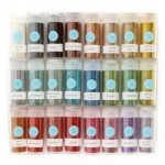 Martha Stewart Crafts Essential Color Glitter 24 Pack ONLY $19.77 Shipped (Reg $29.99!)