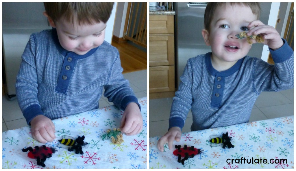 pipe-cleaner-bugs-craft