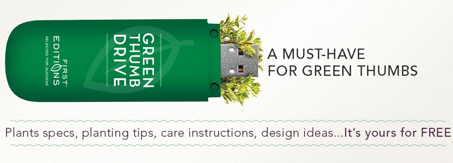 free-green-thumb-drive