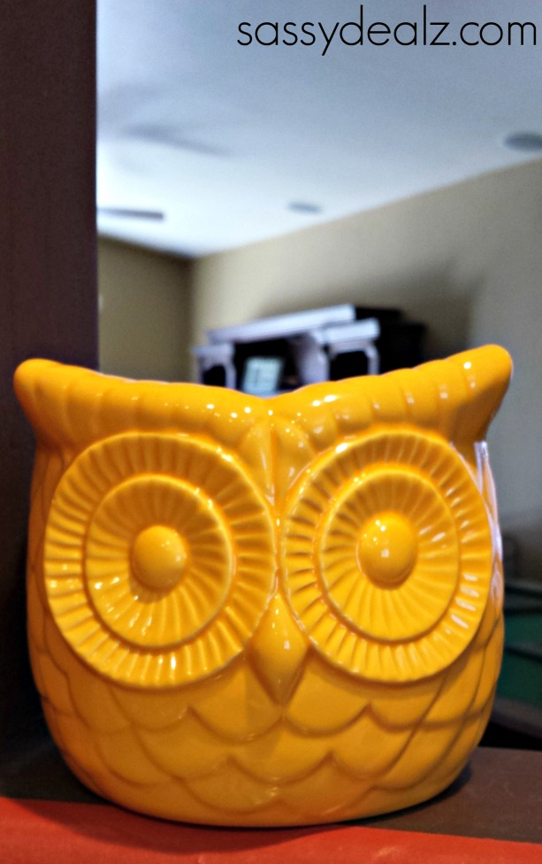 Walgreen S Great Deals Owl Planters Amp Cheap Hanes