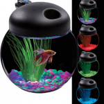 1 Gallon LED Fish Bowl Only $19 Shipped (Reg $30)