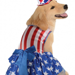 Patriotic Dog Costumes for the 4th of July On Sale