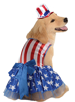 patriotic-dog-costume